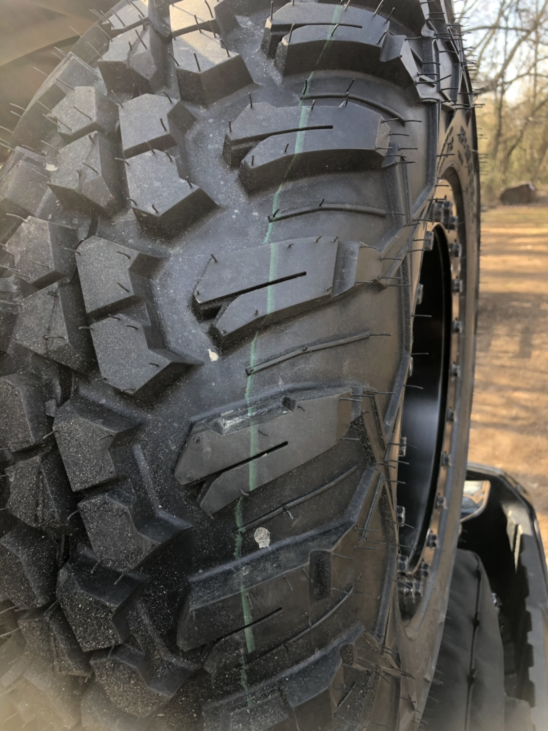 Aftermarket wheels and tires for Teryx.-img_2727.jpg