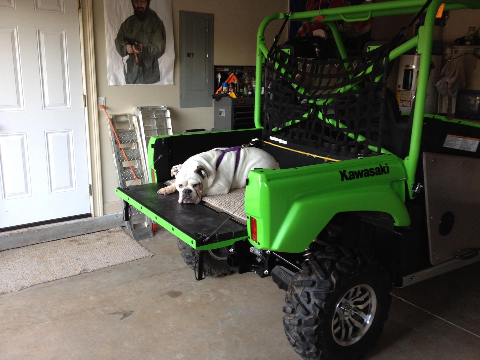 Dog Seat Box Kawasaki Teryx Forum